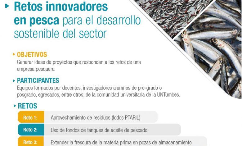 """Photo of Participa en """"Retos innovadores en pesca para el desarrollo sostenible del sector"""""""